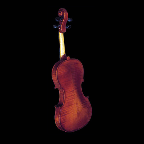 Strunal Violina 4/4 1750 0150500