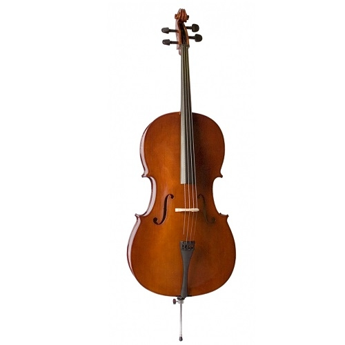 Valencia CE160G 4/4 cello set