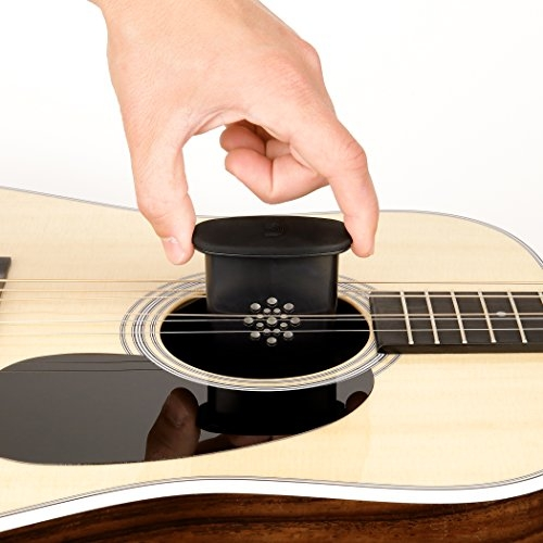 Planet Waves GHP Guitar Humidifier PRO