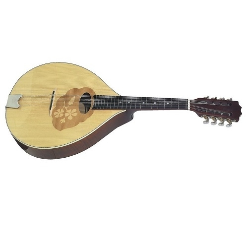 GEWA MANDOLA 505.490 Top and back solid